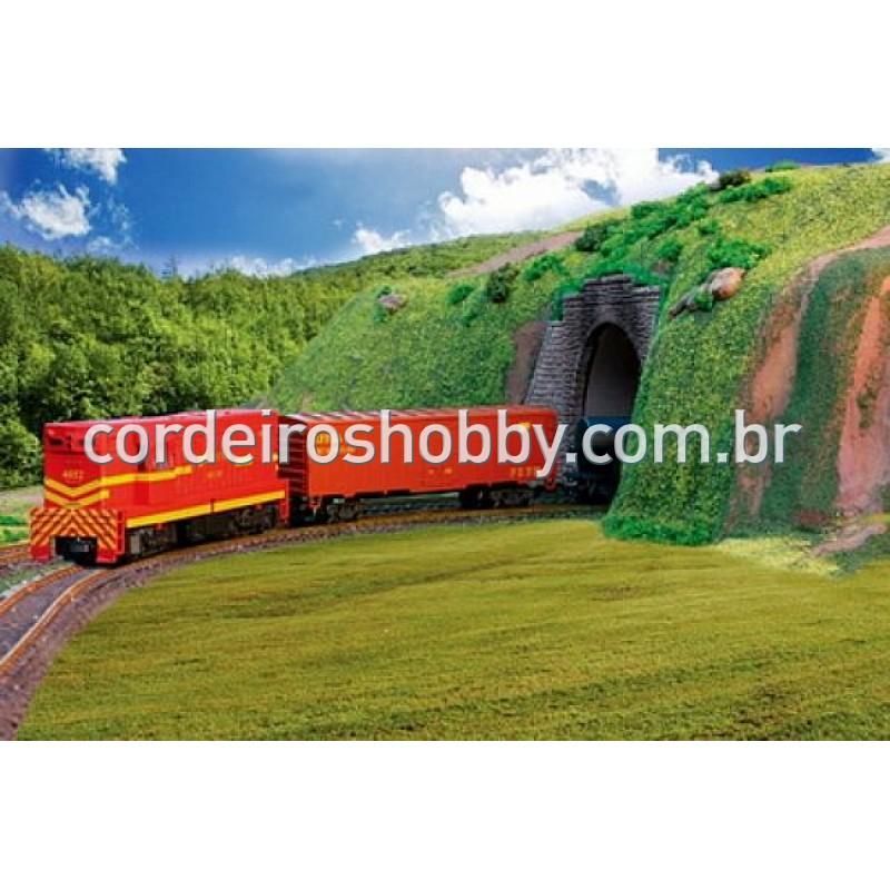 Cargueiro RFFSA - Meu Primeiro Trem Elétrico